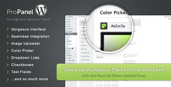 wordpress-theme-option-framework-07