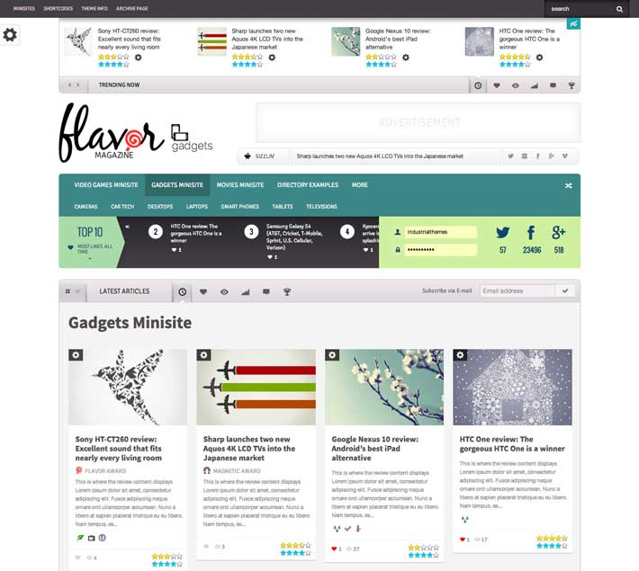 flavor-magazine-review-wordpress theme