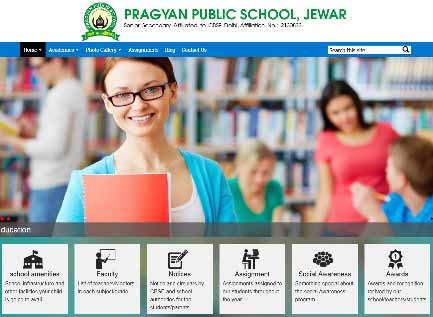 School website theme