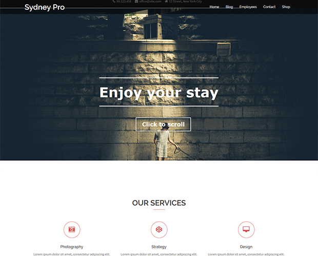 Sydney pro WordPress theme for free download