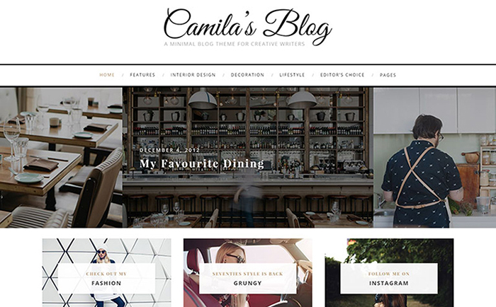 Camila Minimal Blog WordPress Theme